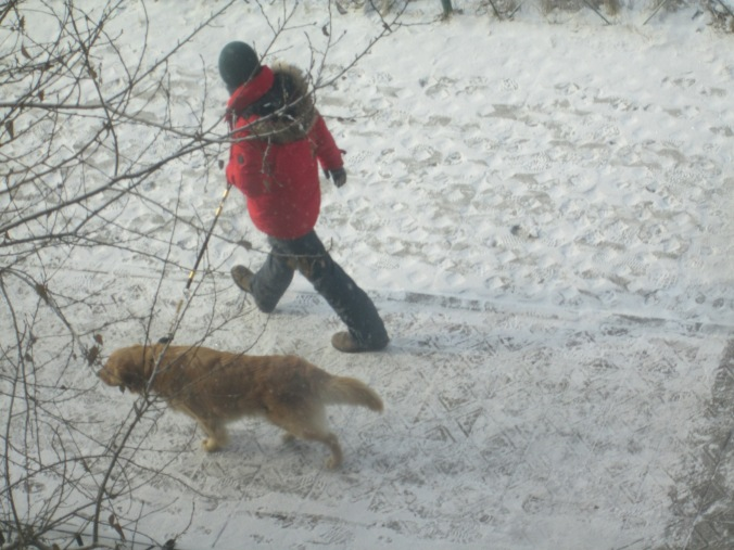 The morning after a snowfall--don't see a man and dog walking together very often!